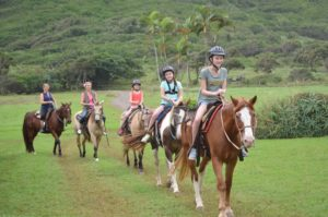 hawaii horse riding