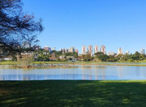 Outdoor space, one of the many things to do in Curitiba with kids
