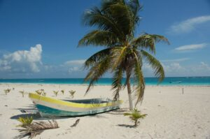 Boat and palm tree on beach in Tulum Mexico - best hostels in Tulum