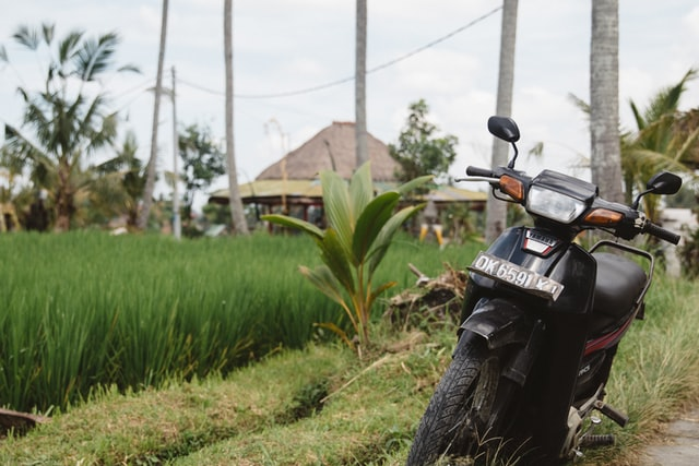 How to live in Bali permanently with a scooter